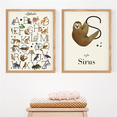 S is for Sirius
