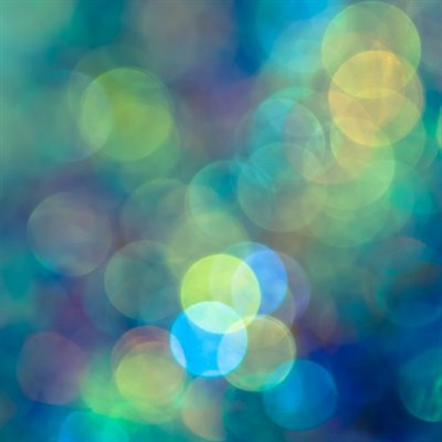Photographic art print: Blue of the Night close up