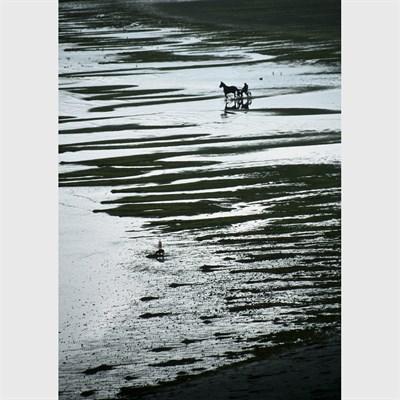 Full image of photographic Art Print 'Hesitation'