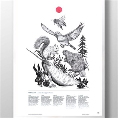 Squirrel Beaver Print art
