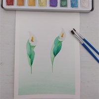 A5 Peace lily watercolour painting