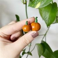 Autumn Pumpkin Plant Friends