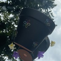Black Flower Rainbow Pride 11cm Planter