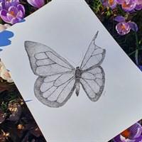 Butterfly Pointillism Art Print