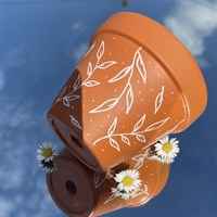 Dainty white leaf 11cm terracotta pot product review