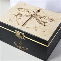 Magical Dragonfly Jewellery Box