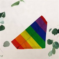 Pride Rainbow Pet Bandana