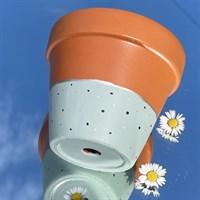 Sage green 11cm terracotta plant pot product review