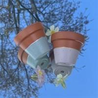 Set Of Two 8cm Terracotta Plant Pots product review