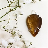 Tigers eye sterling silver claw pendant