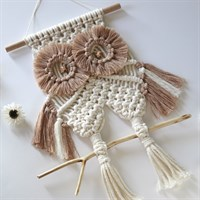 Ulala, The Owl 🦉