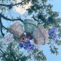 White Leaf Mini Terracotta Plant Pot Set