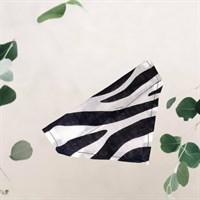 Zebra Print Pet Bandana